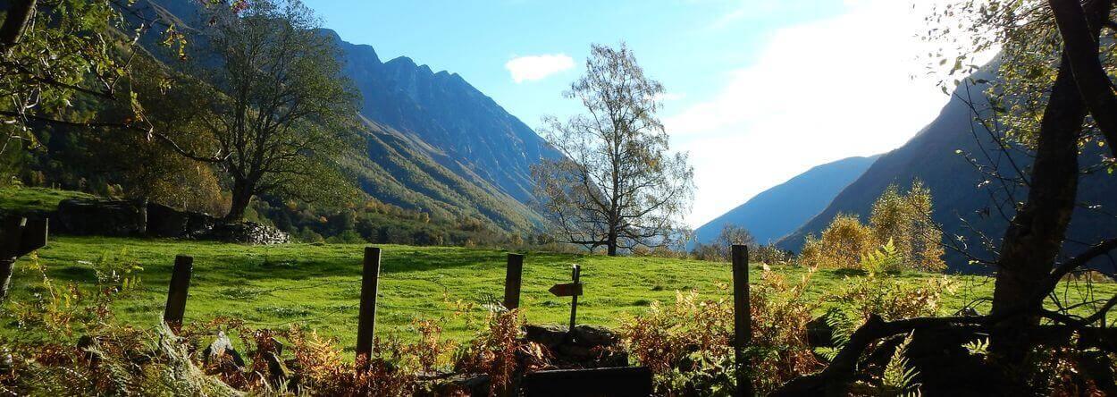 Trekkingtour - Norwegen,Dovrefjell und Trollheimen Teil 2