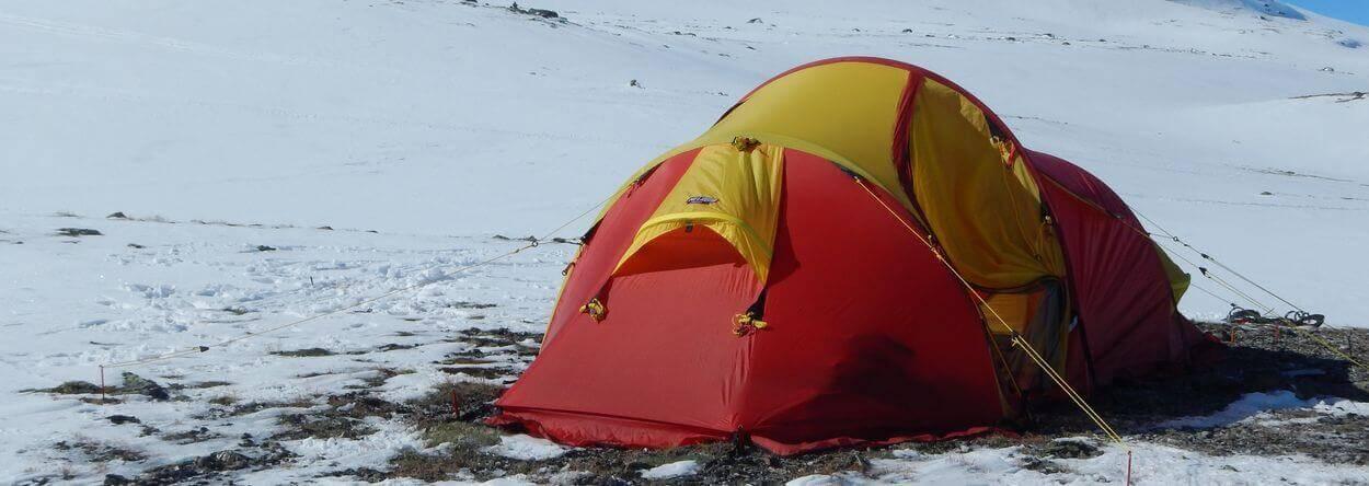 Wintertour - Norwegen, Dovrefjell